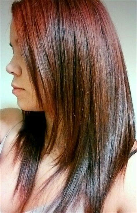 Brown With Hair by Hair With Brown Low Lights Hair Ideas