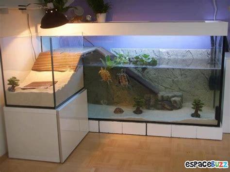fabriquer un aspirateur pour aquarium 26 aquariums d exception