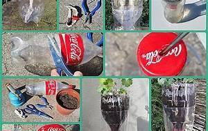 Pflanzen Im Urlaub Bewässern : bew sserungssystem pet flasche ideal f r die aussaat und den urlaub ~ Markanthonyermac.com Haus und Dekorationen