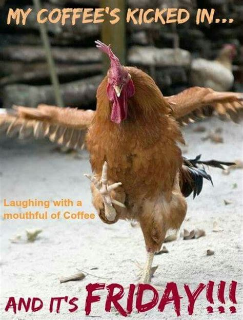A morning cup of coffee is essential to get many people get going in the morning. #Coffee #coffeehumor | Chickens and roosters, Rooster, Chickens backyard