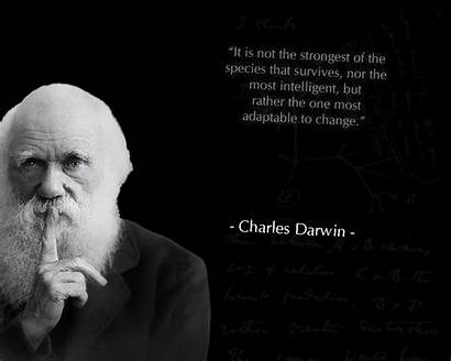 Darwin Tree Charles Change Wallpapers Quotes Religion