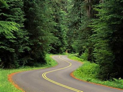 Nature Wallpapers Road Amazing Winding Roads Forest