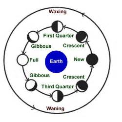 Kids Science Moon Phases