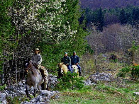 abruzzen  urlaub mit dem pferd pferde im burgenland