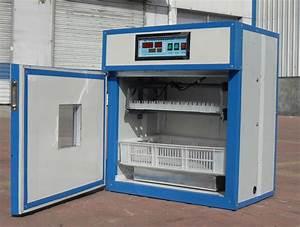 Couveuse Oeuf De Poule : couveuses automatiques de 176 20000 oeufs ~ Premium-room.com Idées de Décoration