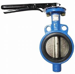 China Two Pieces Wafer Butterfly Valve