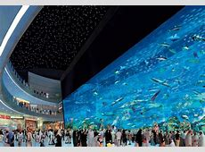 Best Tourist Attractions in Dubai Wonder Wardrobes