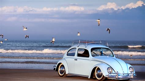 frog vw volkswagen car beetle wallpapers hd desktop