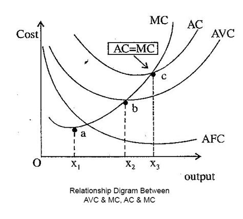 explain the relationship between average variable cost