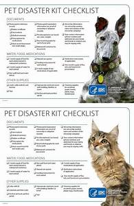 Pet Health Overview