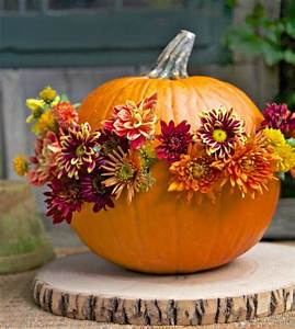 6 Blooming Pumpkin Displays