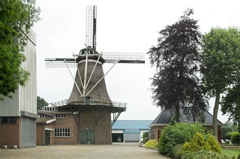 Oldebroek (pronunciation ) is a municipality and a town in the province of gelderland. Oldebroek - Wikipedia