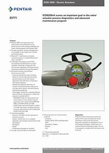 Biffi Electric Actuators  Model Icon 2000