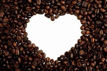 Coffee Shutterstock Lingo Want Guide Shops