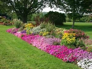 1001 conseils et modeles pour creer une parterre de fleurs for Modele de parterre exterieur 0 1001 conseils et modales pour creer une parterre de fleurs