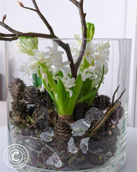 Im Glas Dekorieren by Hyazinthen Im Glas Winterlich Dekoriert Seaside Cottage