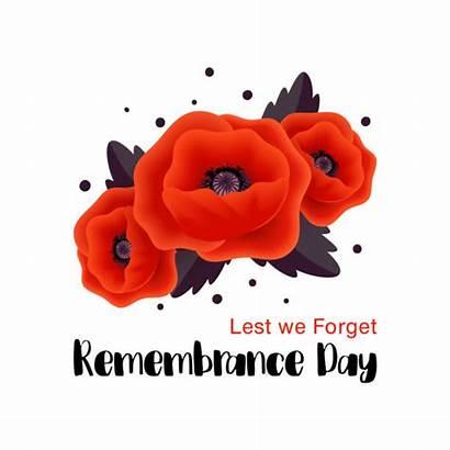 Remembrance Forget Lest Poppy Vector Illustration Card