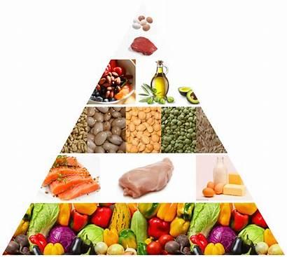 Pyramid Healthy Foods Eat