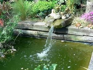 Fontaine Pour Bassin A Poisson : st phane guillot p pini res cr ation de jardins arrosage automatique dans l 39 ile de r ~ Voncanada.com Idées de Décoration