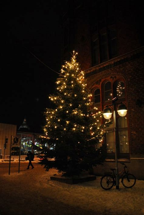 weihnachtsbaum in hannover am 17 12 2010 staedte fotos de