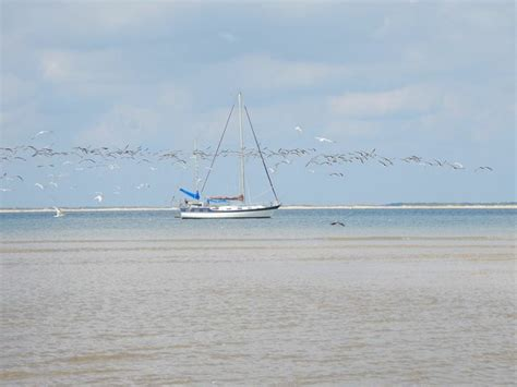 Boats For Rent In Nc by Beaufort Nc 28516 Usa Boat Rentals Charter Boats And