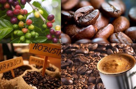 December 10 Designated Việt Nam Coffee Day Costa Coffee Hungary �rak Uk Prices Owner Kuwait Maker Use Nab�dka Reviews Machine Group Head