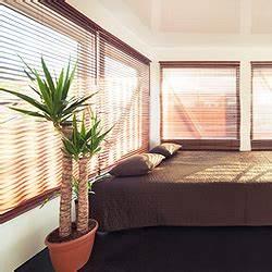 Zimmerpflanzen Für Schlafzimmer : zimmerpflanzen standort pflege gie en d ngen ausputzen ~ A.2002-acura-tl-radio.info Haus und Dekorationen