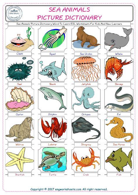 sea animals esl printable english vocabulary worksheets