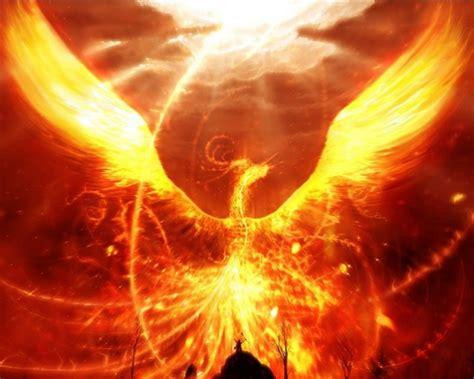 majestic phoenix hd wallpaper