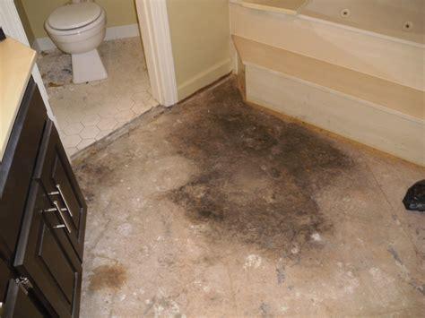 Mold On Bathroom Walls Ideas Best 25 Bathroom Mold Ideas Creative Ideas Diy How To