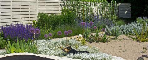 Pflanzen Garten by Mediterrane Gartengestaltung
