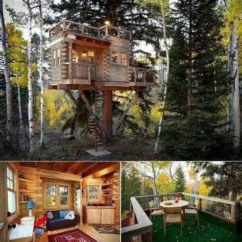 By 2027, 90% of youth who have experienced foster care across washington state will complete high school, with support and a plan to transition into independence. Pin by Kelly McCarthy on |TREEHOUSES| | Cool tree houses ...