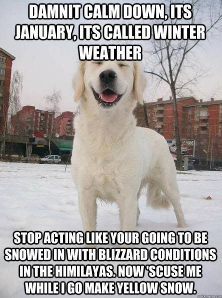 funniest snow memes