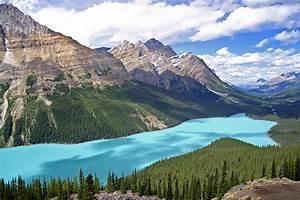 Peyto Lake Peyto Lake In Banff National Park Alberta Cana Flickr