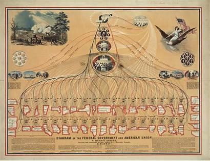 Government Federal Diagram American State Union Compare