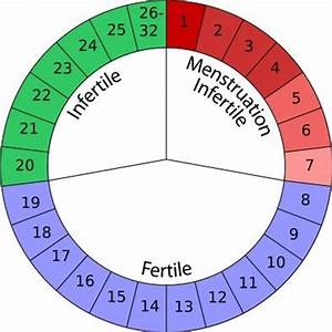 How to Calculate Menstrual Cycle | New Health Advisor