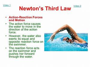 Newton's Third Law of Motion and Momentum - ppt video ...