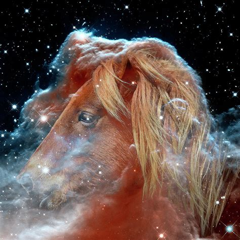 nebula horse space head horsehead outer swartwout bill photograph assateague which september uploaded