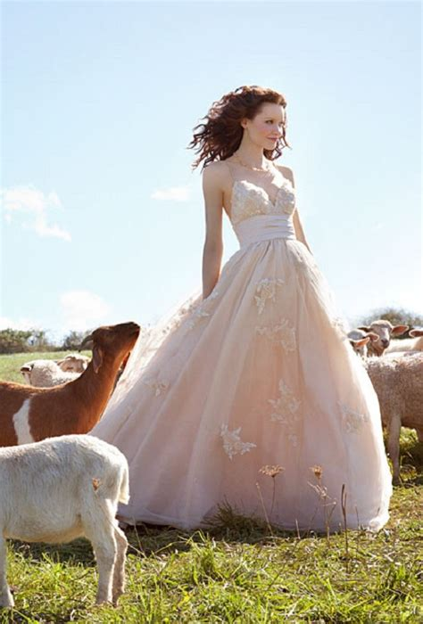Rustic Wedding Dresses Style  Wedding Inspiration. Sheath Wedding Dresses Australia. Vintage Wedding Dress Shops In Essex. I Don't Like Strapless Wedding Dresses. Corset Wedding Dresses Red. Pink Lace Wedding Guest Dresses. Winter Wedding Dresses London. Black Bridesmaid Dresses Liverpool. Big Fat Gypsy Wedding Dresses Images