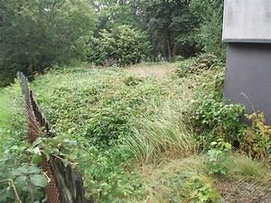 Gartenbau Bergisch Gladbach : startseite garten und landschaftsbau firma reuschel ~ Markanthonyermac.com Haus und Dekorationen