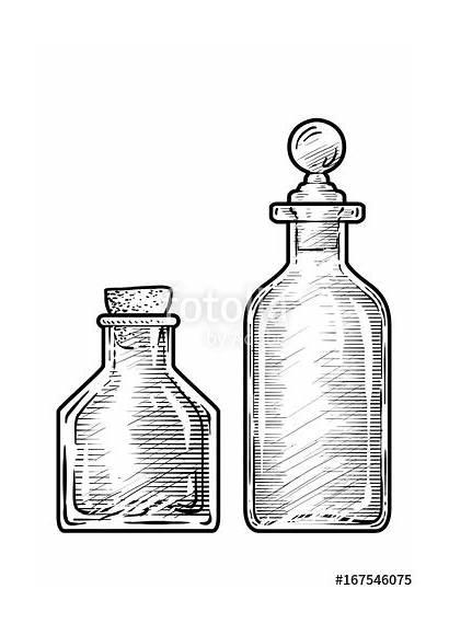 Bottle Drawing Medicine Potion Illustration Ink Line