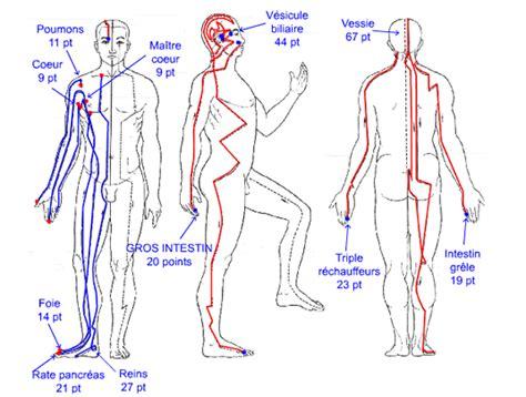 meridien du corps humain les pratiques