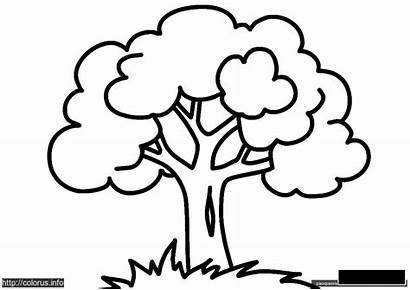 лес Drvo наш Crtež Clip елена Crtez