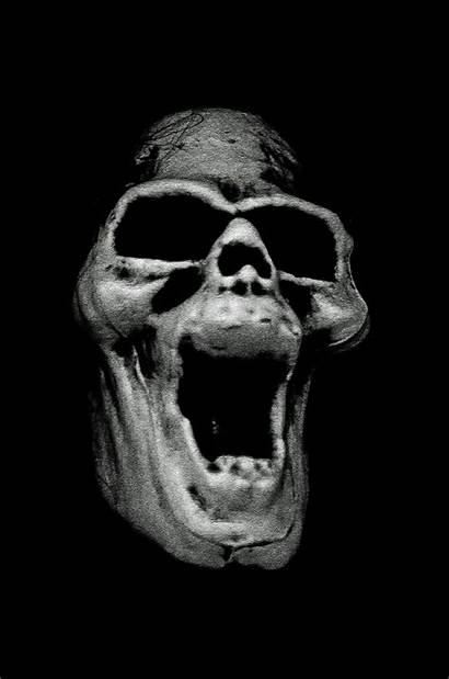 Skull Scary Domain Publicdomainpictures