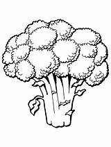 Coloring Pages Primarygames Fruit Vegetable sketch template