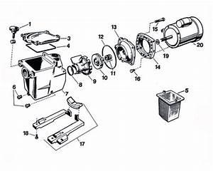 Hayward Super Pump Motor Replacement Parts