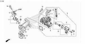 Moto Th - Honda Zoomer-x  2015  Parts