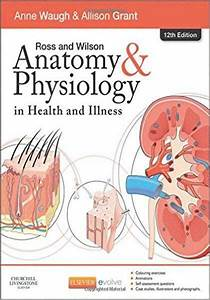 Download Ebook Ross And Wilson Anatomy And Physiology In