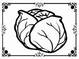 Lettuce Coloring Printable Pages Getcolorings Sheet sketch template