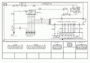 Freightliner M2 A  C Wiring Diagram